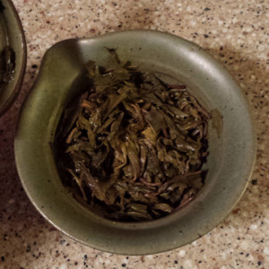 Fengqing Ancient Tree Spring Chun Jian Raw wet leaf in gaiwan