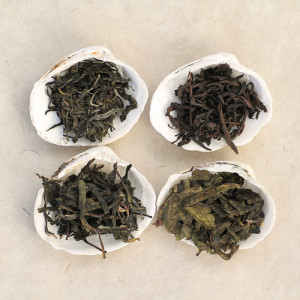 WYMM-tea-sample-set-D